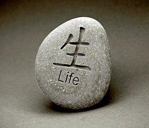 Az élet köve